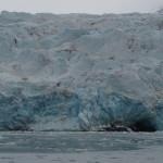 Glaciären Borebreen